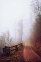The Old Path VI by Aenea-Jones