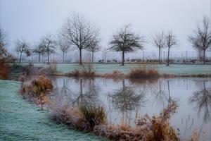 Bleak December VI by Aenea-Jones