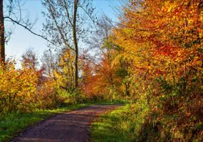 Autumn remembrance XIV by Aenea-Jones
