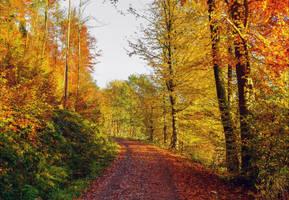 Autumn remembrance XVI by Aenea-Jones