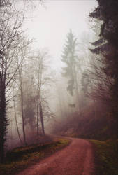 The Old Path VII v2.0 by Aenea-Jones