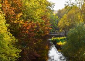 Changing Seasons IV by Aenea-Jones