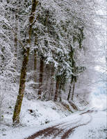 Snowland IX by Aenea-Jones