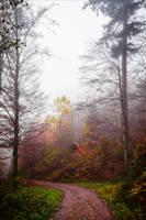 Last Breath of Autumn XII by Aenea-Jones