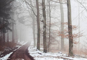 A lonely path into the Unknown IV by Aenea-Jones