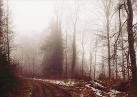 The Old Path VIII by Aenea-Jones