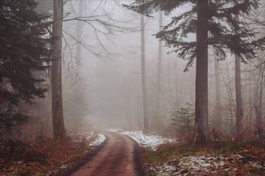 The Old Path IX by Aenea-Jones
