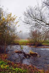 Past Autumn by Aenea-Jones