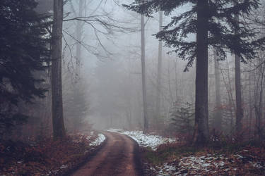 The Old Path IX v2.0 by Aenea-Jones