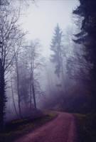 The Old Path VII v3.0 by Aenea-Jones