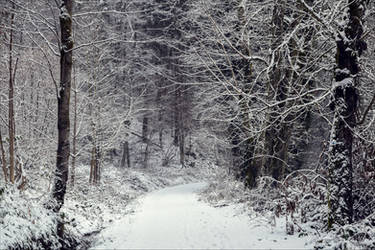Eternal Winter IX v2.0 by Aenea-Jones