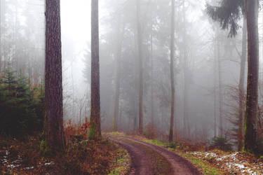 The Old Path XI v3.0 by Aenea-Jones