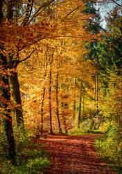 Autumn remembrance XXI by Aenea-Jones