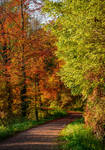 Autumn remembrance XXIII by Aenea-Jones