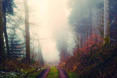 Lost in the Woods V v5.0 by Aenea-Jones
