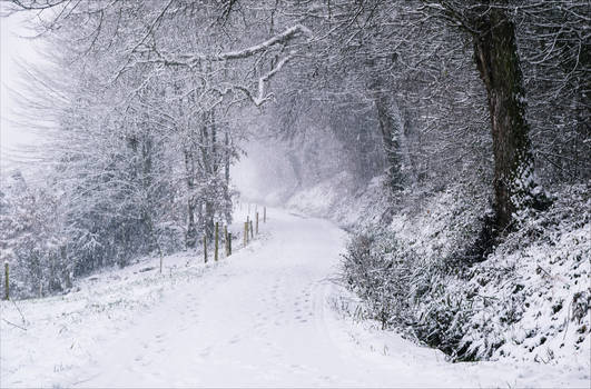 Snowland X v3.0 by Aenea-Jones