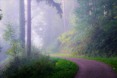 Foggy Morning XXIX by Aenea-Jones