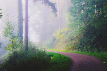 Foggy Morning XXIX v2.0 by Aenea-Jones