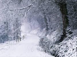 Snowland X v4.0 by Aenea-Jones