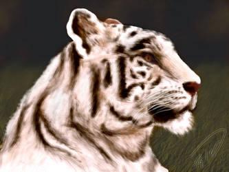 Seph Tiger by seph-style