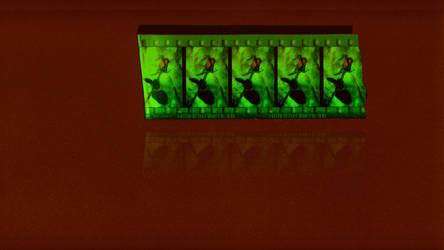 Filmstrip Roses by oscillatorsweep