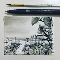Inktober 22, 2017 'Trail' by vertseven