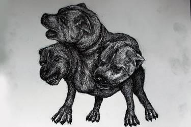 Threeheaded Dog by doragonbat