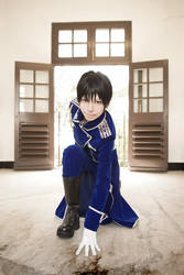 Roy Mustang by yui930