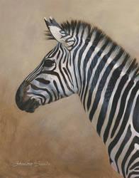 Zebra Portrait - Acrylic Painting by ShaleseSands