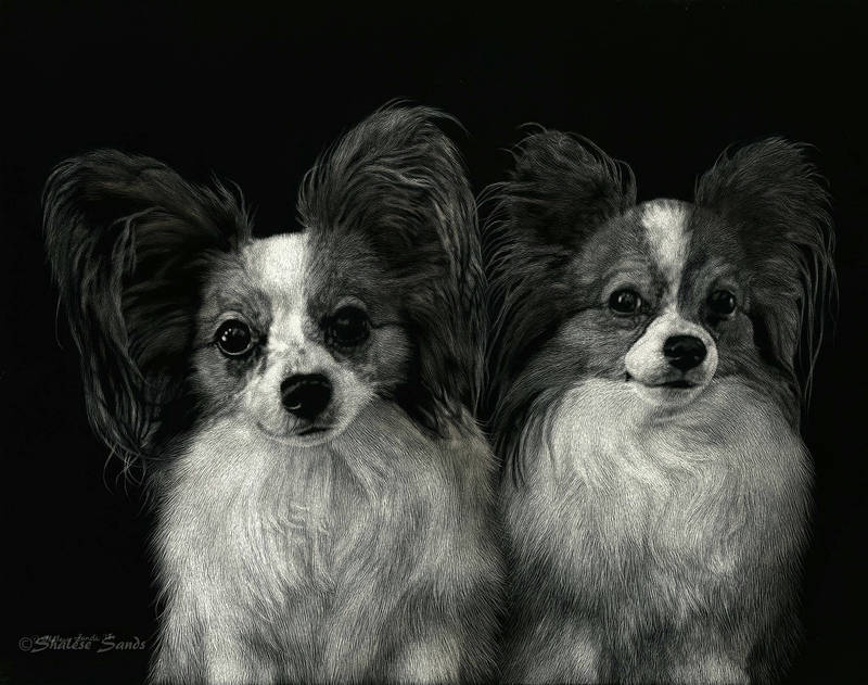 Angel and Henry - Scratchboard by ShaleseSands