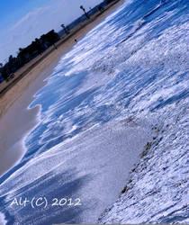 South Side Seal Beach Pier by Diesel-420