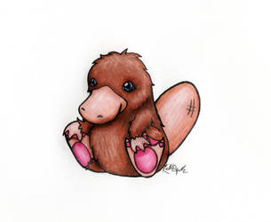 Platypus by GreenChikin