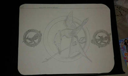 The Hunger Games Sinsajo  by noahpokeART