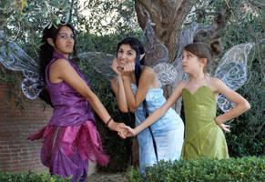 Disney Fairies together by MaddMorgana