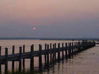 Chincoteague Island, VA by Leo9