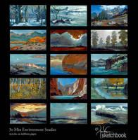Environment Studies by churro818