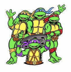 Teenage Mutant Ninja Turtles by mikedaws