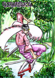 Okami: Ushiwaka by VulpineNinja