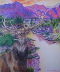 Elk by AlyssaMarae