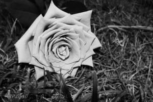Forgotten Memories II by mandy-c
