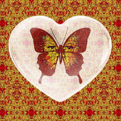 Fire Heart Butterfly  by zuzugraphics