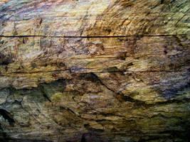 Wood 3 by JWJjjoj