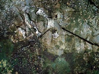 Moldy shingles by JWJjjoj