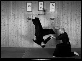 JUJUTSU Martial Art Class. by D-T-Arts