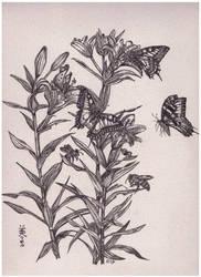 Lilies and butterflies, Inktober 14-2017 by MirielVinya