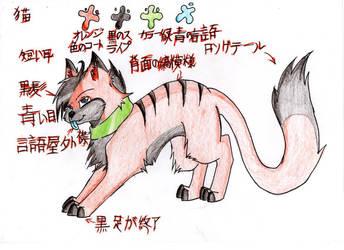 Japanese cat plan by dranzer-dragon-15