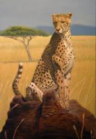Serengeti Speed Trap by Wolverat