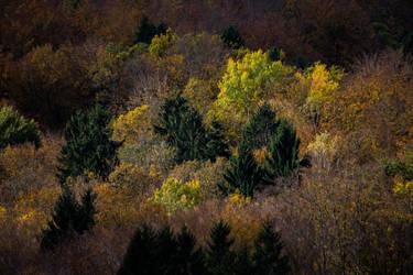 Autumn landscape by luka567