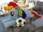 Rainbow Dash 01 Main Soccer Ball Size Comparison by NeysaNight