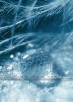 Glittery by ThePuzzleTeam